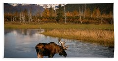 Bull Moose Bath Towel