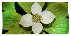 Hand Towel featuring the photograph Bunchberry Flower by WB Johnston