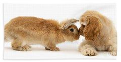 Bunny Nose Best Hand Towel