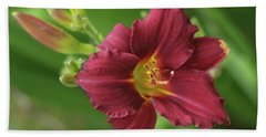 Burgundy Day Lily Hand Towel