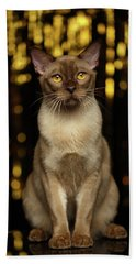 Burmese Cat Sits On New Year Background Hand Towel