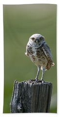 Bath Towel featuring the photograph Burrowing Owl by Gary Lengyel