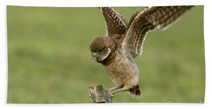 Burrowing Owl - Learning To Fly Hand Towel
