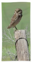 Burrowing Owl On Post Bath Towel