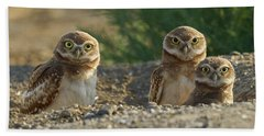 Burrowing Owls Hand Towel by Doug Herr