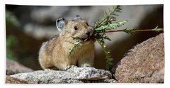 Busy As A Pika Hand Towel