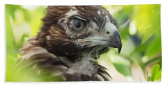 Buteo Jamaicensis Bath Towel