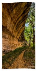 Butler Wash Wave Formation - Blanding - Utah Bath Towel by Gary Whitton