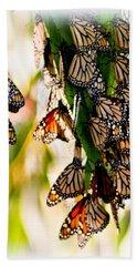 Butterfly Butterfly Hand Towel