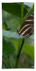 Butterfly 2 Bath Towel
