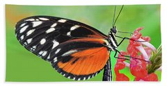 Butterfly  Golden Helicon Hand Towel