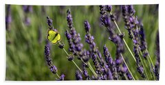 Butterfly N Lavender Hand Towel