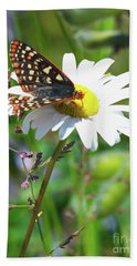 Butterfly On A Wild Daisy Bath Towel by Ansel Price