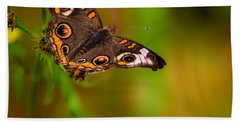 Butterfly One Hand Towel