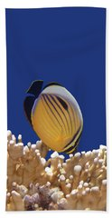 Butterflyfish And Corals Bath Towel