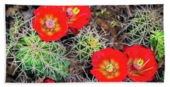 Cactus Bloom Bath Towel