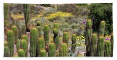 Cactus Field In San Diego Hand Towel by Jasna Gopic