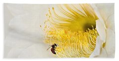 Hand Towel featuring the photograph Cactus Flower Diner No. 2 by Joe Bonita