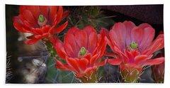 Cactus Flowers Hand Towel