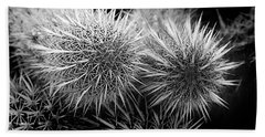 Hand Towel featuring the photograph Cactus Spines by Phyllis Denton