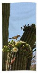 Cactus Wren Hand Towel