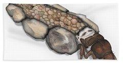 Caddisfly Larva Nymph Goeridae_silo_pallipes -  Hand Towel