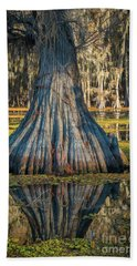 Caddo Cypress Bottom Hand Towel