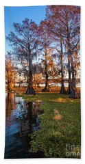 Caddo Lake Shoreline Hand Towel