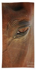 Cades Cove Horse 20150907_39 Hand Towel by Tina Hopkins
