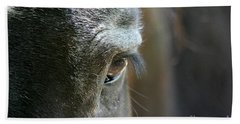 Cades Cove Horse 20160525_247 Bath Towel by Tina Hopkins