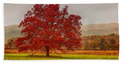 Bath Towel featuring the photograph Cades Tree After The Rain by Geraldine DeBoer