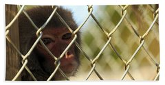 Caged Monkey Bath Towel