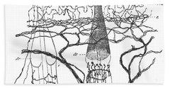 Cajal Illustration Rat Nerve Endings Bath Towel