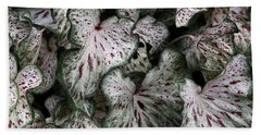 Bath Towel featuring the photograph Caladium Leaves by Debi Dalio