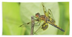 Calico Pennant Hand Towel