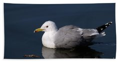 Hand Towel featuring the photograph California Gull by Sharon Talson