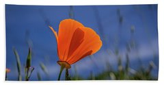 California Poppy Hand Towel by Marc Crumpler