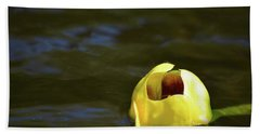 Calm Reflection  Hand Towel