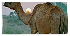 Camel Sunrise Hand Towel by Michael Cinnamond