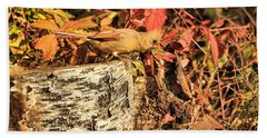 Hand Towel featuring the photograph Camo Bird by Debbie Stahre