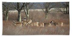 Canaan Valley Deer Hand Towel