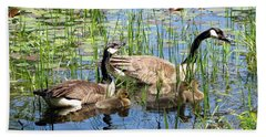 Canada Geese Family On Lily Pond Bath Towel