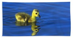 Canada Gosling Goes For A Swim Bath Towel
