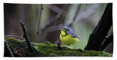 Bath Towel featuring the photograph Canada Warbler by Gary Hall