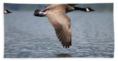 Canada's Goose Hand Towel by Cathie Douglas
