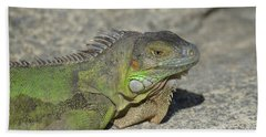 Candid Of A Green Iguana On A Rock Hand Towel by DejaVu Designs