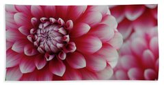 Candy Cane Dahlias Bath Towel