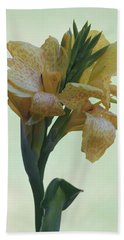 Cannas Amarillo IIi Hand Towel
