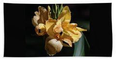 Cannas Amarillo Squared Hand Towel by Suzanne Gaff