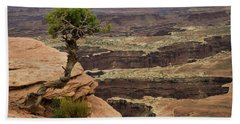 Bath Towel featuring the photograph Canyonlands by Gary Lengyel